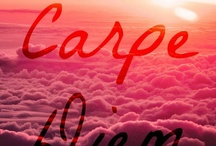 Carpe Diem / by Sue Merren
