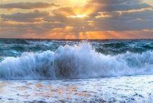 Beach and Ocean Life / Beautiful beach and ocean inspiration