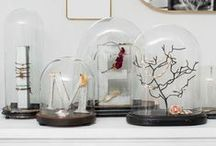 Decorations ♡ Cloches / Home decor with cloches / by Cinzia Corbetta
