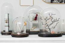 Decorations ♡ Cloches / Home decor with cloches / by Cinzia Corbetta