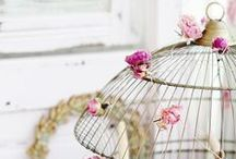 Decorations ♡ Bird Cages / Home decor with bird cages / by Cinzia Corbetta