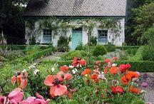 Cottage Style / Cottage decor ideas