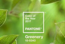 Graphic Design - Colour
