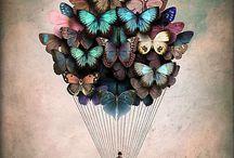 Illustrations - Christian Schloe