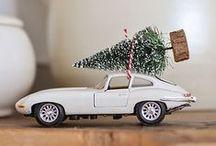 Christmas ~ Winter / by Lynne Garrett