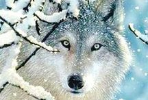 Wolves/Huskies / by Darlyne Call Crow