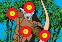 Archery Targets, Games / by Barbed Wire