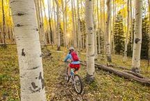 Mountain Biking for Beginners / Mountain biking tips and destinations