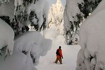 SNOWSHOEING TIPS & DESTINATIONS / Tips, gear, and places to go snowshoeing