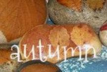 Autumn / Autumn {sunnydays}