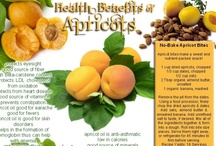 Apricot, Growing & Preserving