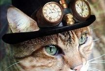 steampunk / Steampunk gifts, steampunk images and steampunk items