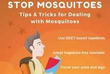 Mosquitoes Defense / Tips & Tricks for Getting Rid of and Dealing with Mosquitoes.