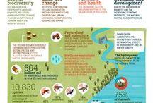 UNEP / Infografías asociadas a GEO-6 para Latinoamérica y el Caribe