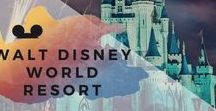 Walt Disney World Resort / Adult Disney Guide to Walt Disney World, best experiences for adults, how to plan the perfect trip and more Disney from the adult-only perspective. www.disneyadulting.com