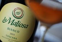Natural Wine / Organic red and white wine produced in Maremma, Tuscany #organicwine #naturalwine #maremma #tuscany #demeter