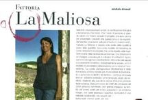 The People of La Maliosa / #manuli #antonellamanuli #saramilletti #paolasucato #lorenzocorino