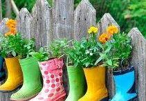 Kids| Garden