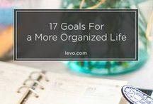 Someday I will be Organized / Organizational tips, tricks, ideas
