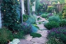 Outside / Gardening and outdoor living / by Jessica Torres Photography
