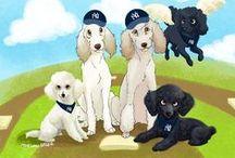 I luv Poodles!!! / by Jill Mashanic Kreisler