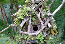 Birdhouses / by Garden Design