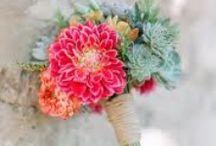 Floral / by Carolyn Rae