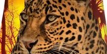 Summer Dresses / Animals - Tiger, zebra, panda, koala, peacock, flamingos, parrots, cats, dogs. Flowers, fruits.  Fantasy - unicorn, skull, pegasus, fairy tales. Egypt, King Tut, pyramid, Spinx