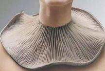mushroom   / color board   art • fashion • décor in   texture   taupe cream  tan