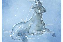 Stars; constellations