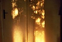 Colour & Light / bright beautiful world / by Danielle Lynn