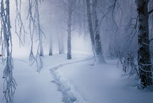 Winter, how I love thee / by Coldplay Carrie