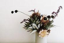 floral. / floral arrangements, floral inspired patterns, flowers.