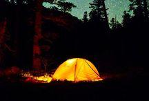 Camping / by Danielle Lynn