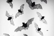 halloween. / spooky decor and treat ideas.