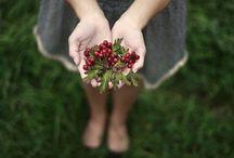 Berry Recipes / by Danielle Lynn