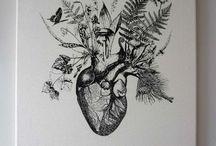 Anatomy / by Danielle Lynn