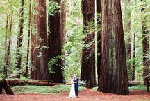 Wedding Locations & Venues / by Elle McNamara