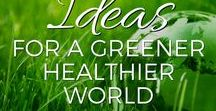 Ideas for A Greener, Healthier, More Peaceful World / Sustainability starts at home, but it doesn't end there. If we hope to have a healthy, happy world for generations to come, we need to make changes now in how we manage our communities and our countries. Here are some ideas about how we can do that.