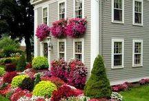Flower Garden Paradise