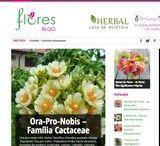 Blogs e Lojas / Varios blogs www.ptlojas.net