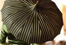 Umbrellas & canes