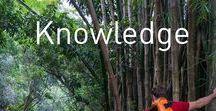 Knowledge / Knowledge is power!