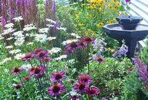 Gardening / gardening tips, herb garden, garden DIY, garden decor, container gardening, raises gardens, garden markers, garden crafts, garden gnomes, yard decor