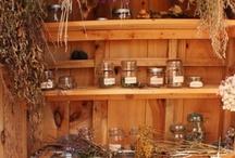 Pagan: Herbs