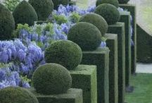 Outdoor spaces and gardens