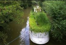 Floating Gardens / by Stevie the floating artist