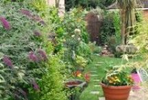 Gardens to escape in / Gardens where I feel I could just loose some time and chill out. / by Stevie the floating artist