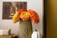 Crafty Ideas / by Avery Daniel