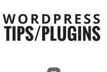wordpress website tips / wordpress tips and hosting, website development advice for bloggers, best wordpress plugins and tools, html and css tips for bloggers and writers;